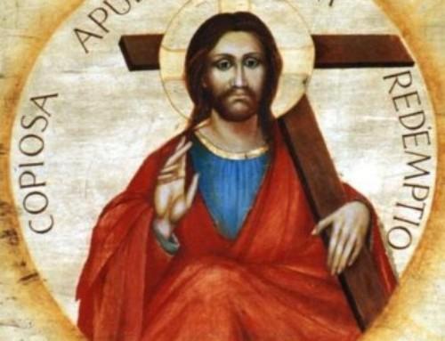 XVI niedziela zwykła – 18.07.2021.